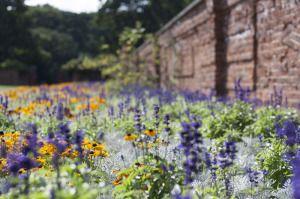 wall_garden